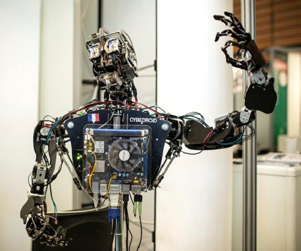 robo report
